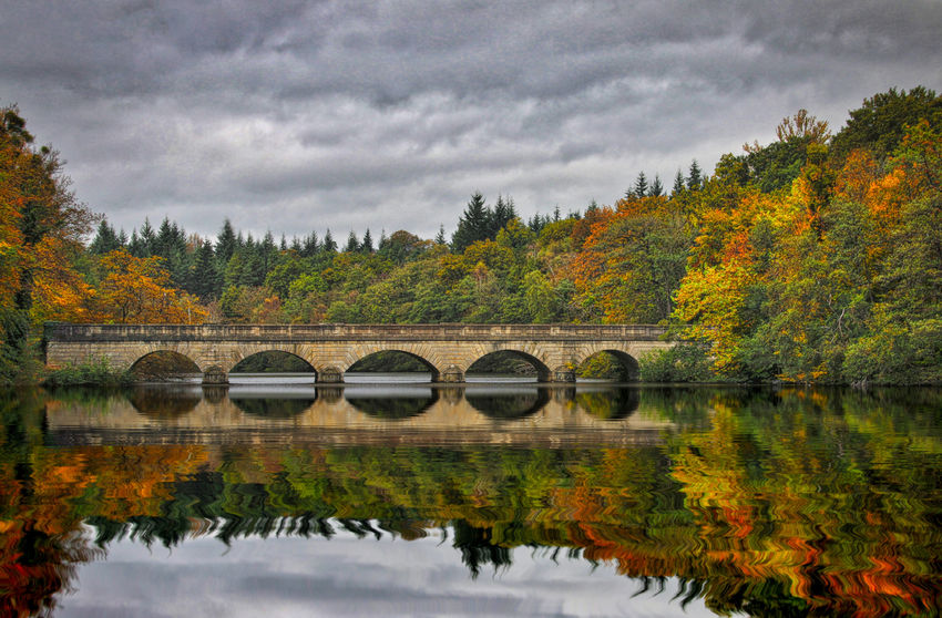 Autumn at Virginia Water, Surrey, UK Water Tree Cloud - Sky Autumn Sky Scenics - Nature Reflection Nature Beauty In Nature Connection Plant Bridge No People Lake Bridge - Man Made Structure Tranquility Non-urban Scene Tranquil Scene Change Outdoors Arch Bridge