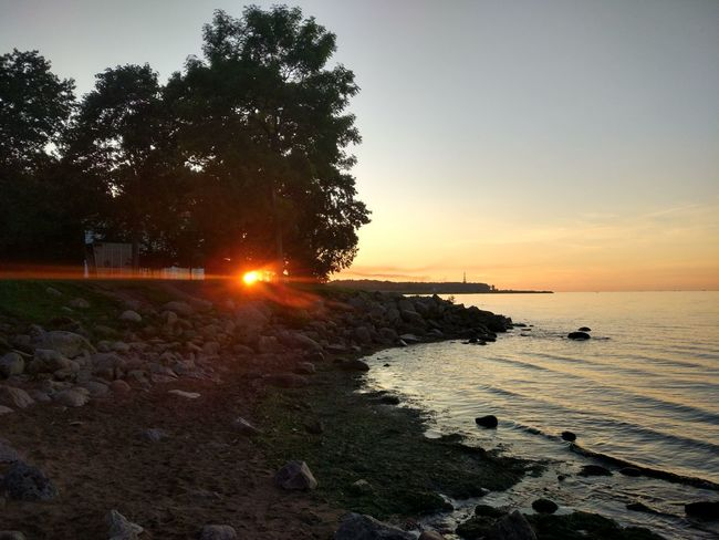 Petergof Saint Petersburg The Gulf Of Finland Beach Beauty In Nature Day Nature No People Outdoors Perfection Rocks Scenics Sea Sky Sun Sunset Tree Water Peterhof The Week On EyeEm EyeEmNewHere Lost In The Landscape Perspectives On Nature