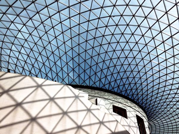 British Shorthair London Taking Photos Architecture
