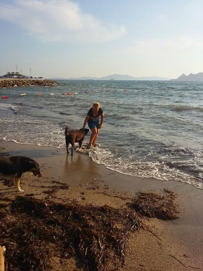 Turkey Bodrum Turgutreis  Summer Views Sea Seaside Nature Photography Dogs Sky And Sea EyeEm Best Shots