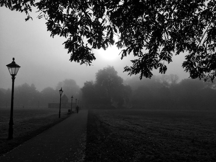 Certain weather conditions create images of fantastic tones 🙂 even if limited by the capacities of the mobile phone😜 Fog Landscape Nature Monochrome Mist Way Path Park Southampton Outdoors Black And White Photography