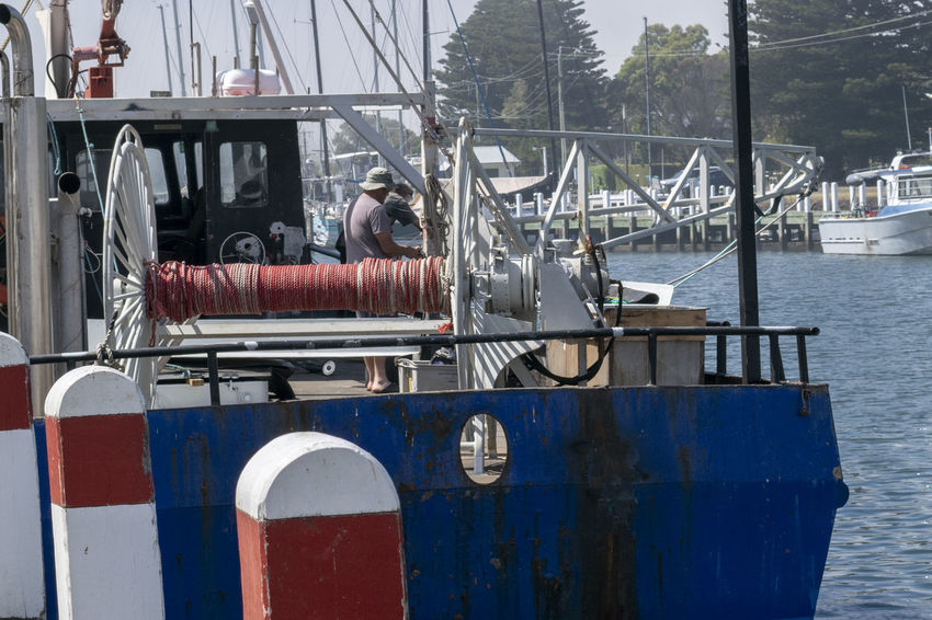 Fishermen getting things ready before leaving. Boat Deck Getting Ready Going To Work Marina On The Water Working Blue Fisherman Boat Fishermen Fishing Fishing Boat Fishing Industry Fishing Time Harbor Men Moored Mooring Post Nautical Nautical Vessel Occupation Real People Rear View Seafaring Transportation Water