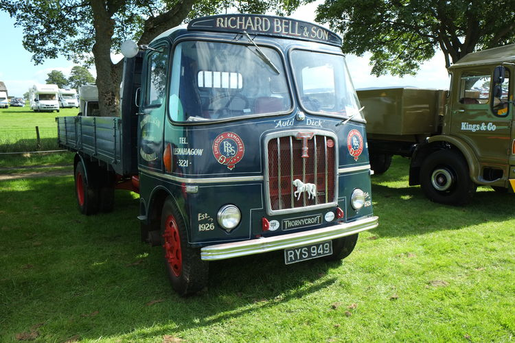 Biggar Vintage Rally Albion Lorries Biggar, Scotland Military Vehicles No People Vintage Coac Vintage Lorries Vintage Mascots Vintage Vehicle Rally Vintage Vehicles
