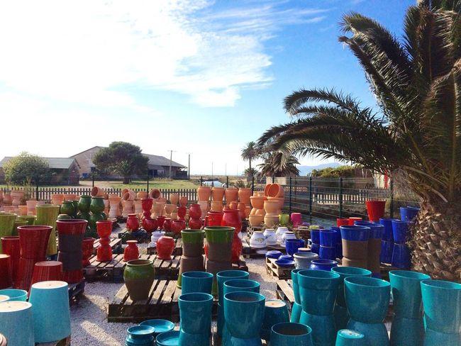 Pottery Pottery Shop Flower Pots Coulours  Pots South Of France Côte D'Azur Var Hyères Production Been There. Palm Tree Tombolo Giens Peninsula Giens