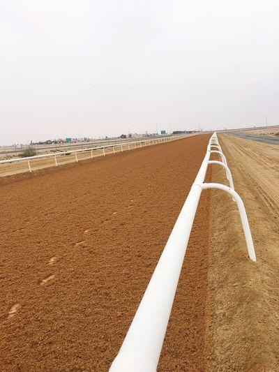 Race Track Desert Dubai Horserace