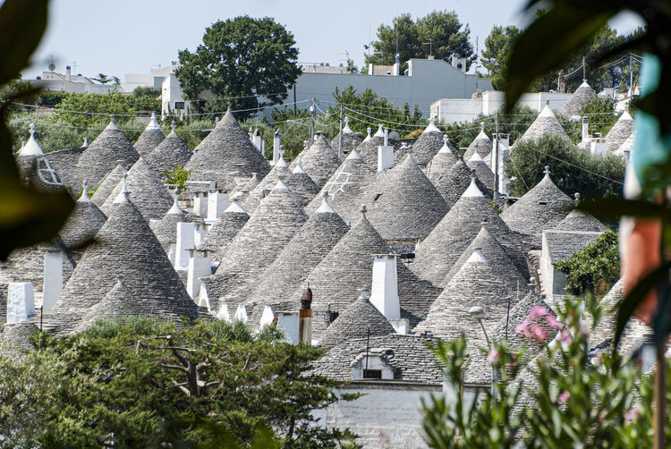 The magic of Alberobello's Trulli travel location - It was really amazing to know this particulars constructions full of charming and to ear the history about the Alberobello's Trulli in the Italy Apulia region (Puglia). The history said that the Alberobello's origins date back to the Middle Age. The settlers built the houses with stone and without cement and with the easiest way to demolish them in the case of an inspection by the Kingdom of Naples, thus avoiding paying taxes. Another interesting thing is the decorative pinnacles and symbols painted on many roofs of the trulli that were often used to identify the different religions of their inhabitants. Albelobelo Italia Viajes  2019 EyeEm Awards The Traveler - 2019 EyeEm Awards The Architect - 2019 EyeEm Awards The Photojournalist - 2019 EyeEm Awards The Street Photographer - 2019 EyeEm Awards Italy EyeEm Gallery EyeEm Best Shots Eyeem4photography Architecture Built Structure Plant Building Exterior History Tree The Past Nature Building Day Religion No People Place Of Worship Travel Destinations Belief Spirituality Ancient Travel Tourism Outdoors Ancient Civilization Archaeology