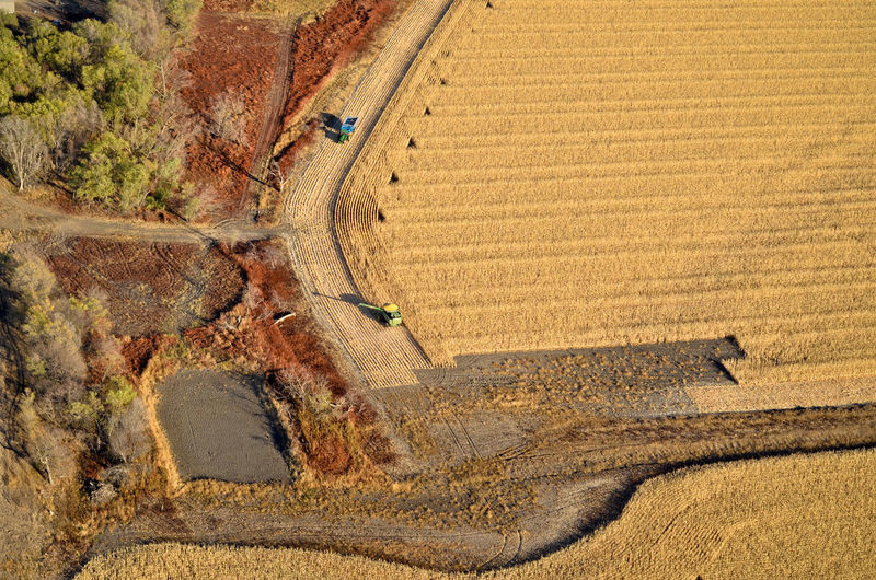 High Angle View Aerial View Aerial Aerial Photography Aerial Shot Field Farm Farming Farmer Harvest Harvesting Agriculture Combine Harvester Tractor Cornfield Corn Grain Crop  Cereal Plant Environment Landscape Rural Scene Ethanol Energy Land