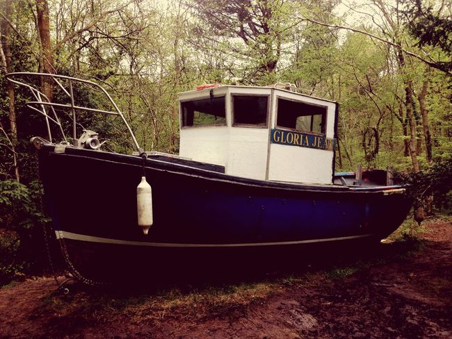 Bristol Art Woods Clifton Nature Boats Taking Photos Walking Around England