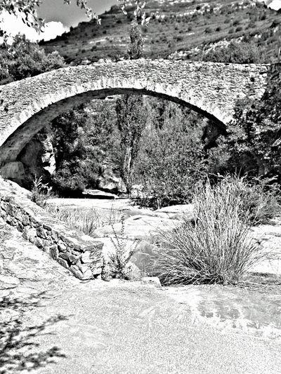 EyeEm Best Shots - Black + White Bnw_collection Landscape_Collection Summer Days