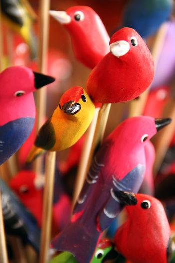 Art Artesanato ArtWork Brasilian Colors Cultura Popular Culture Manual Art Nature Art Popular Culture Trabalho Manual