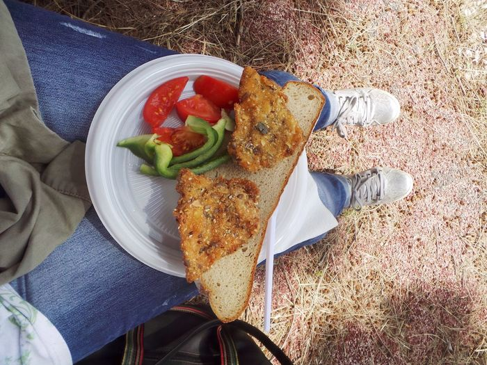 Bread Brunch Time Close-up Day Directly Above Eating Food Food And Drink Freshness High Angle View Human Leg Low Section One Person Outdoors People Picnic Picnic Time ♡ Ready-to-eat Tomato Vegetable Food Stories