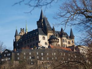 Castle Wernigerode (Harz, Germany) Best Shots EyeEm Harz Mountains, Germany Schloß Wernigerode Winter Architecture Bare Tree Building Exterior Built Structure Castle Day Harzmountains History Low Angle View Monument Museum Of Natural History Outdoors Sky Wernigerodecastle