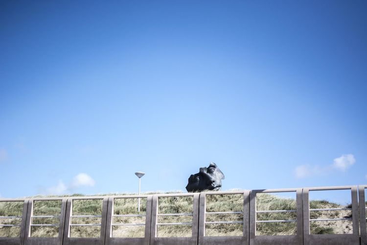 Blue Chainlink Fence Clear Sky Copy Space Day Fence Man Made Object Outdoors Perching Railing Raven - Bird Road Sign Scenics Sky Tranquil Scene Tranquility Wooden Post