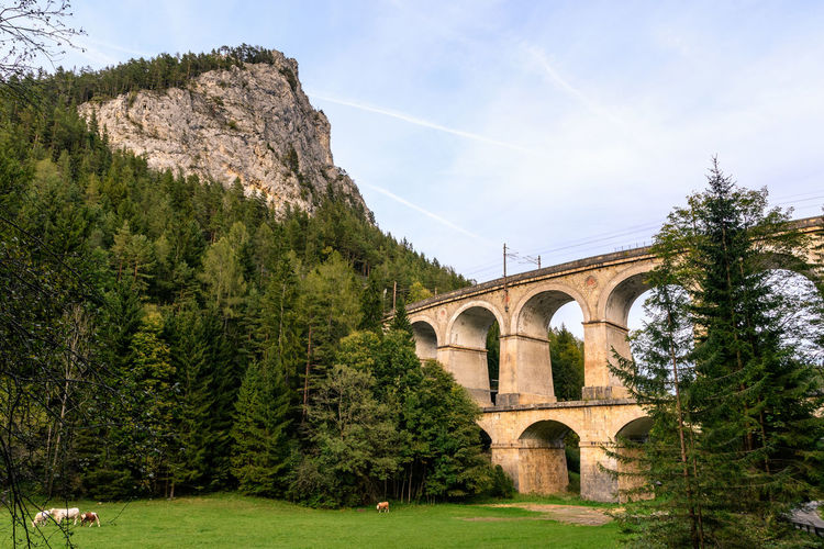 rail viaduct -