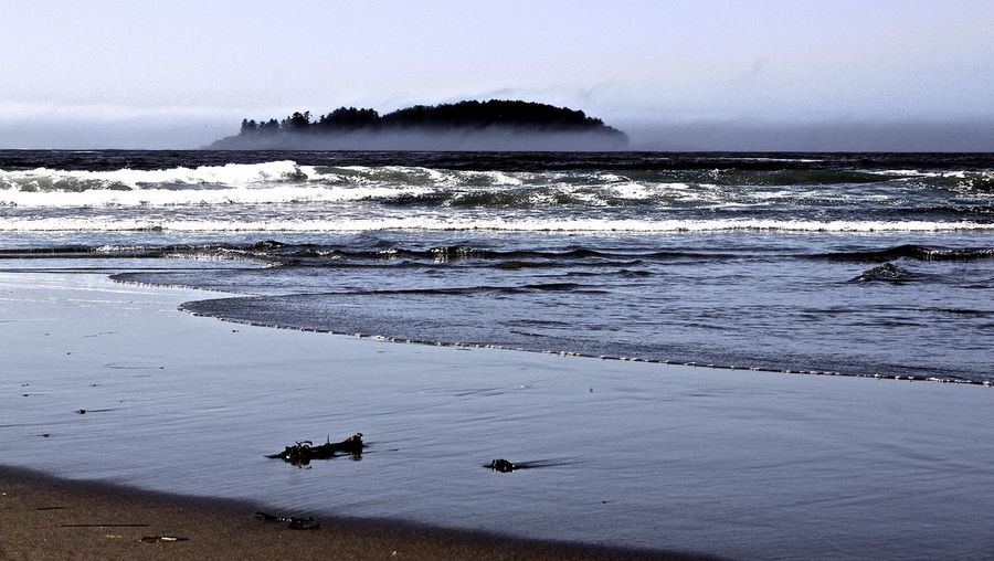Pacific Rim National Park Vancouver Island Vancouverisland Vancouver Island Pacific Rim Beach Beach Day EyeEm Nature Lover Beautiful Nature On The Beach Coast Beachphotography