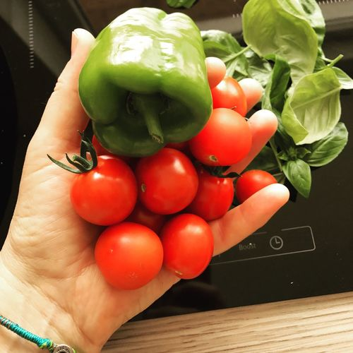 Human Hand Food And Drink Human Body Part Vegetable One Person Indoors  Food Freshness Holding Healthy Eating Green Color Real People High Angle View Tomato Raw Food Lifestyles Close-up Day People