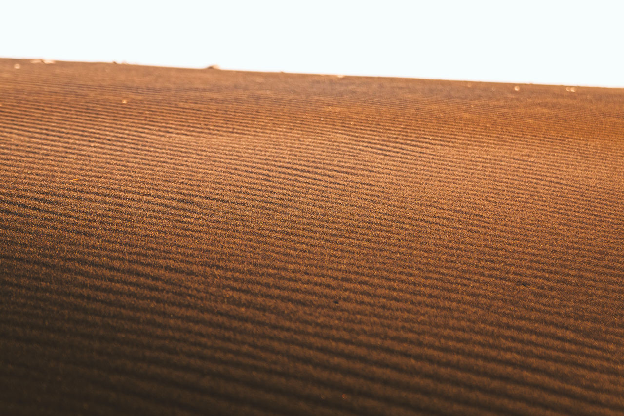 textured, pattern, nature, no people, close-up, day, beauty in nature, outdoors, sand dune