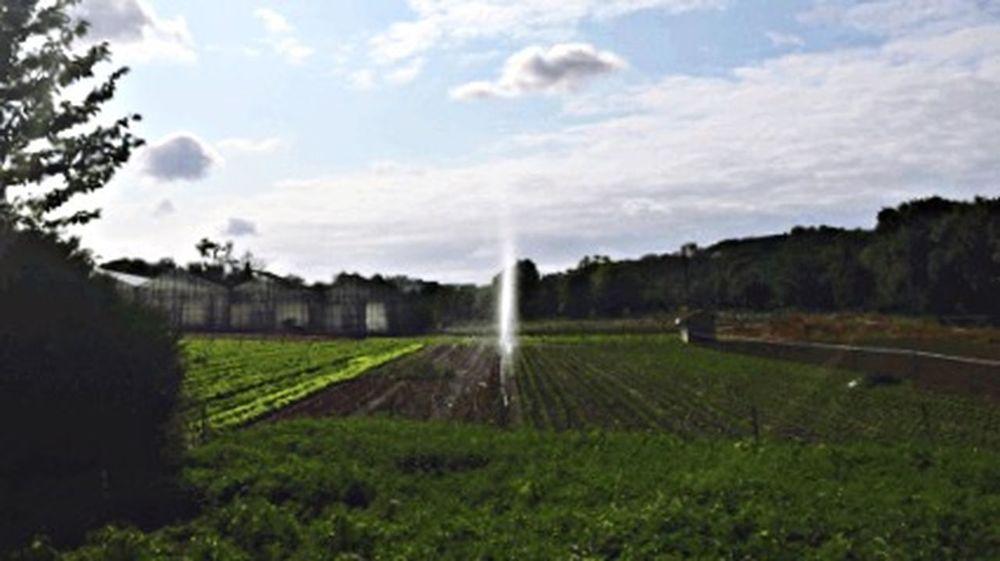 Arrosage automatique Agriculture Paysage CIELFIE France Charente Skyfie