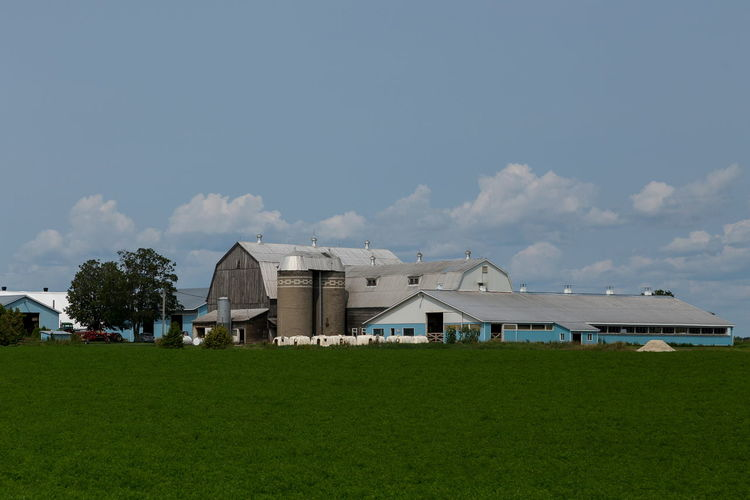 Large farm installations, barns, silo tanks, and other buildings in summer, Southern Ontario, Canada Architecture Field Landscape Rural Scene Land Farm Silo Tanks Barns Large Installation Southern Ontario Canada Summer No People Sky Agriculture Industry Sunny Day Prosperous Production Ontario, Canada Exterior