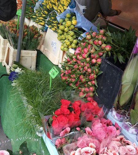 Bonjour🌞....c'est trop froid😰😰😰 蚤の市 掘り出し物みっけ 宝探し からの生鮮食品たち Whiteasparagus Spring Marche Market Vanve 寒すぎ 体感温度 4 Paris