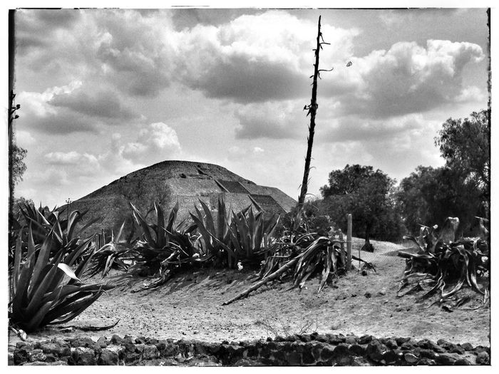 Pyramid of the Moon in Teotihuacan Sky Cloud - Sky Plant Nature Transfer Print Auto Post Production Filter Tree Outdoors