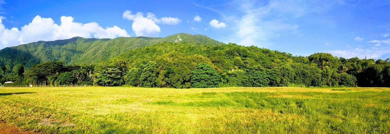 Redlynch, Cairns, Tropical North Queensland, Mountain Nature Landscape, betterlandscapes Gods Green Country, Stunning Scenery, Hope, Life,