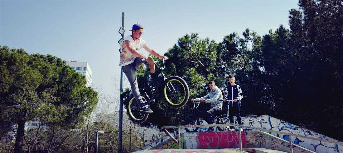 Freestyle biker Young Adult People Full Length Sport Low Angle View Bicycle Agility Real People Sportsman Freestyle Sports Freestyle Freestyle Biking Freestylebmx Leisure Activity Skateboard Park Bmx Cycling Riding Cycling