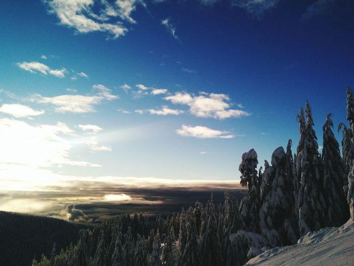 Skiing ❄ Snow Racing Gates Sky