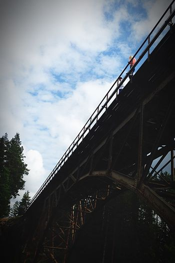 Nature On Your Doorstep Train bridge over a ravin!
