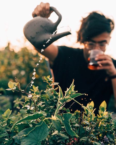 Man Pouring Water On Plant While Drinking Coffee