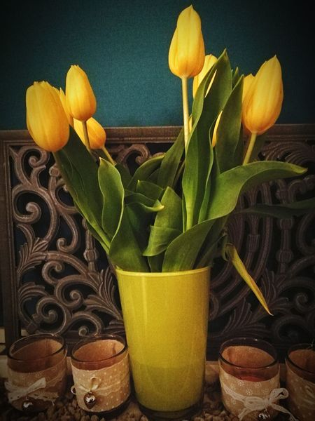Just a pose with deco. Yellow Indoors  Freshness Nature No People Flowers Yellow Tulips Glassware EyeEmNewHere Made By Noesie Indoor Photography HuaweiP9Photography Grey Background, Art Is Everywhere The Week On EyeEm