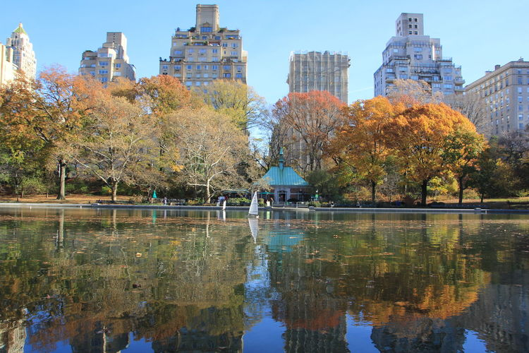 Reflection Of Trees On Lake At Central Park In City During Autumn
