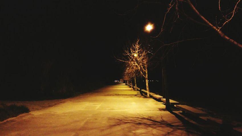 Portugal Night Lights Porto Portuguese Portuguese Streetphotography Portuguese Architecture Architecture Streetphotography