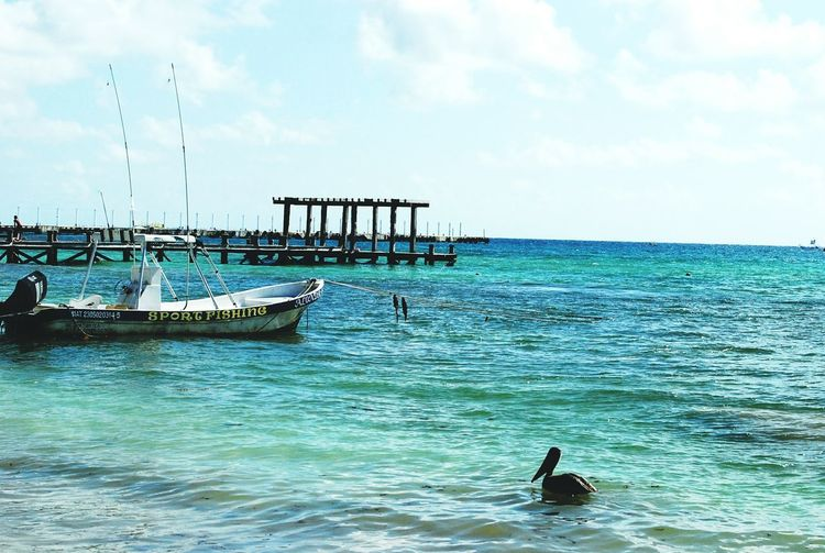 Relaxing Enjoying Life Mexico On My Way Don't Waste Your Life! Hanging Out Playadelcarmen Playa♡ Hello World Water Sea