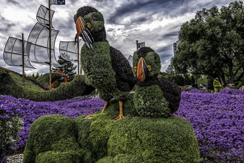 Canada150 Gatineau Ontario Ottawa Puffin Quebec Birds Canada Cloud - Sky Flowers Mosiac Nature Outdoors Plant Sculpture Statue