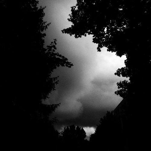 Rain clouds Silhouette Low Angle View Sky Rostock Blackandwhite Lichtenhagen Black And White Black And White Friday
