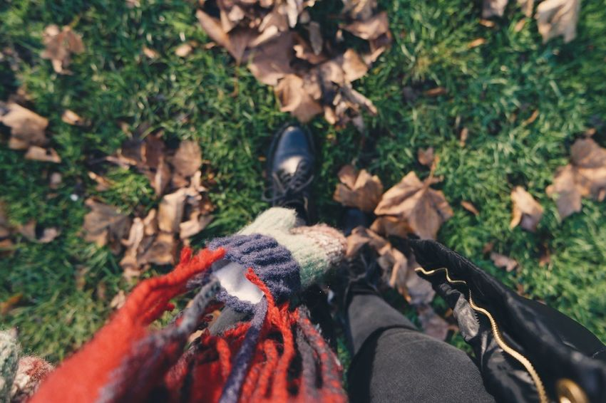 Stepping on the autumn leaves is just simply fun Outdoors Nature Autumn Leaves Autumn Grass Winter Walk This Way EyeEmNewHere