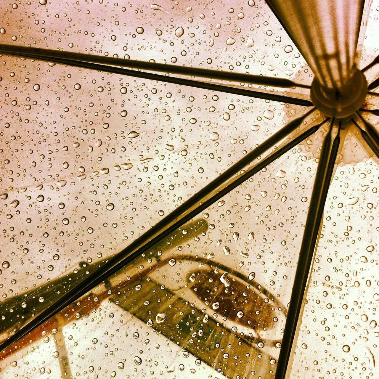 rain, wet, water, drop, weather, raindrop, rainy season, full frame, backgrounds, pattern, close-up, no people, indoors, nature, day
