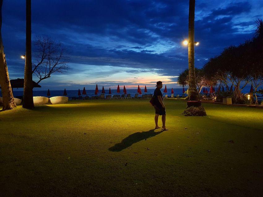 Sun set. Tree Illuminated Sky Grass EyeEmNewHere The Traveler - 2018 EyeEm Awards