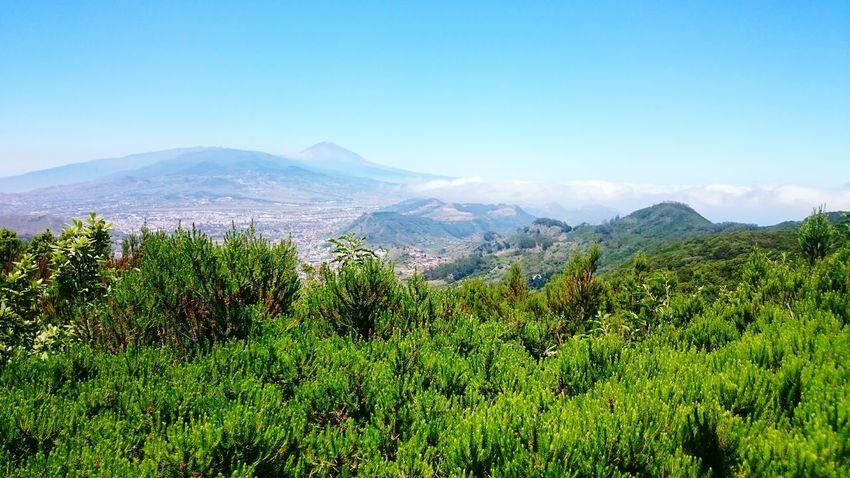 Teide❤ Santa Cruz De Tenerife La Laguna Paisaje Unico Relaxing