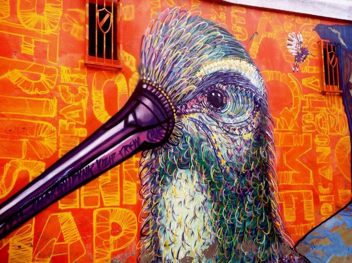 Arte urbano 🎨🐦 Hummingbird Taking Photos EyeEm UrbanART