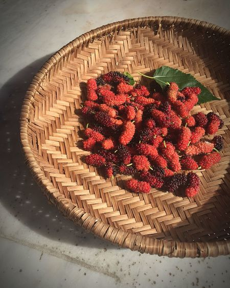 FirstEyeEmPic Garden Mulberry Healthy Lifestyle Instagood Singapore
