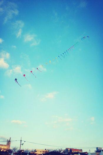 축제에서 제일 예뻤던 무지개색 연 Clouds And Sky Kites Sky_collection