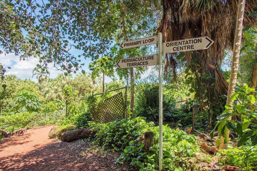 Darwin,NT,Australia-February 25,2018: Sign at the George Brown Botanic Gardens with lush greenery in Darwin, Australia Australia Botanic Garden Darwin Growth Landscape_Collection Northern Territory Path Plant Sign Sunlight Tourist Attraction  Tranquility Tree Community Garden Directions Foliage Garden George Brown Botanic Garden Greenery Landscape Lush - Description Lush Foliage Sign Post Sky Spring