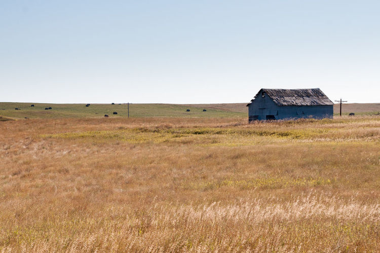 North Dakota Landscape Agriculture Barn Beauty In Nature Building Exterior Built Structure Clear Sky Day Farm Grass Grass Landscape Nature No People North Dakota Outdoors Rural Scene Scenics Sky Tranquil Scene Tranquility USA
