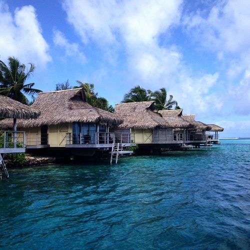 On the island of Moorea in French Polynesia. Tahiti Moorea FrenchPolynesia ChristmasBreak Nofilter