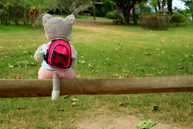 Traveling alone! a puppy soft toy with backpack sitting on a wooden bench on the green field Childhood Grass Plant Child Day Bench Nature Sitting Park Representation Rear View Seat Park - Man Made Space Field Outdoors Innocence Toy Soft Toy Doll Resting Relaxing Traveling Garden Funny Grass
