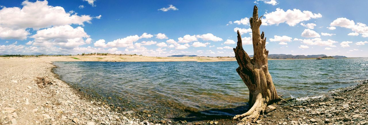 Dead Tree Desert Water Panorama Bare Tree Beach Cloud - Sky Fluffy Clouds Lake Landscape Nature No People Oasis Outdoors Sea Shoreline Sky Sunlight Tranquility Tree Tree Trunk Ultrawide Water Wavelets
