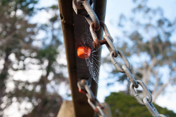 Chains on a playground swing Playground Equipment Playground Swing Chains Hanging Low Angle View Metal Chains Swing