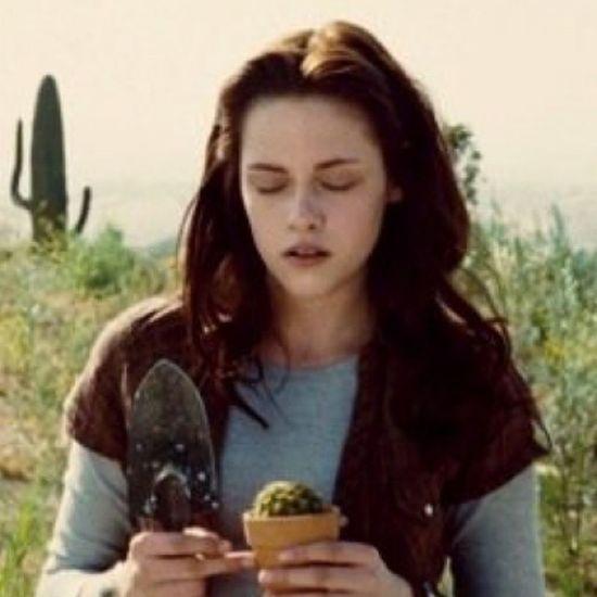 """""""Eu seria a garota nova da cidade grande, uma curiosidade, uma aberração."""" HappyBirthdayBellaSwan"""